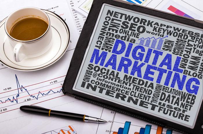 Local Business Needs Digital Marketing