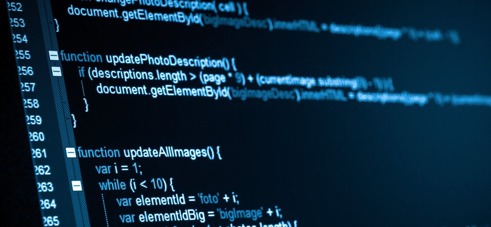 Should Entrepreneurs Know Programming Basics